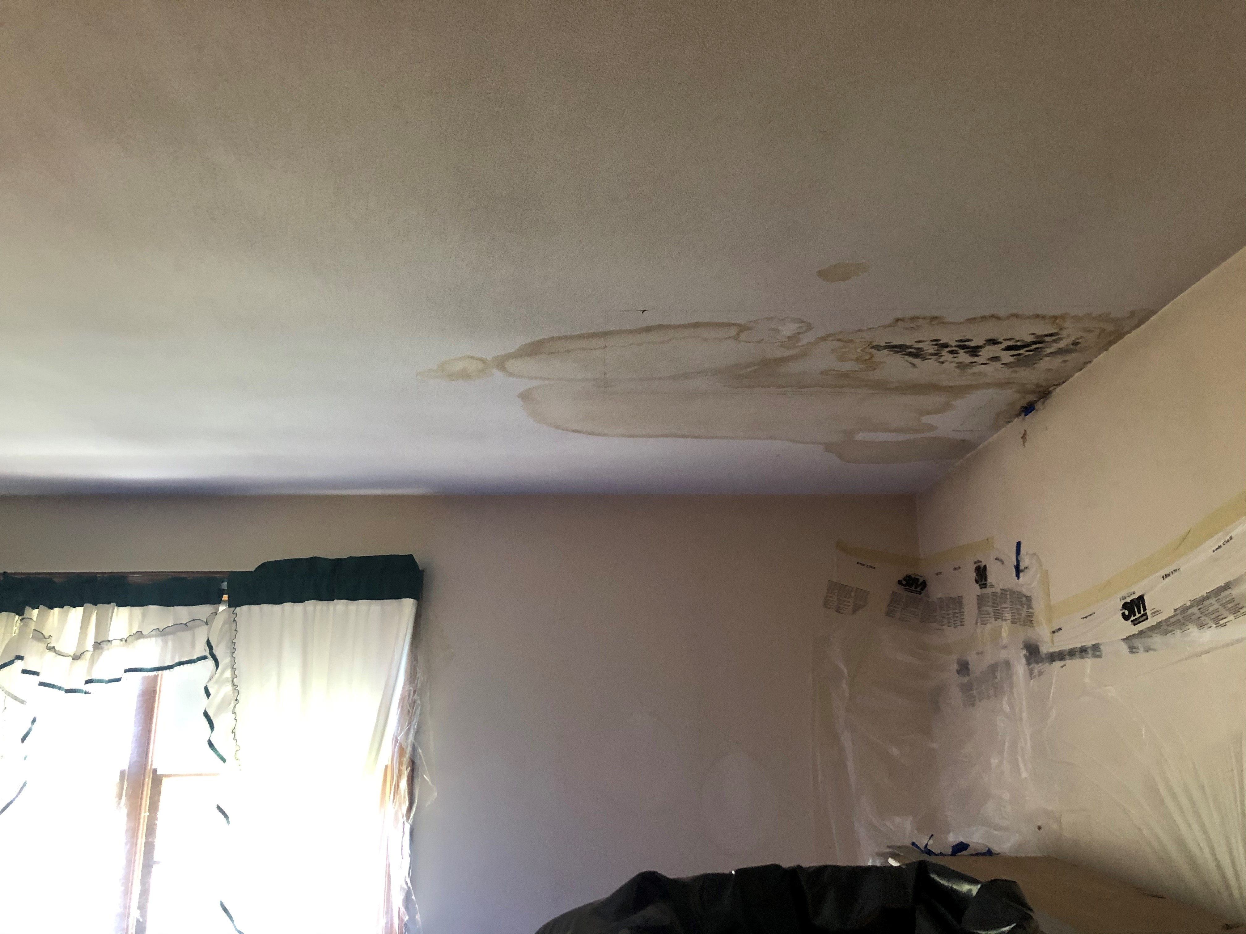 Water Damaged Ceiling Drywall